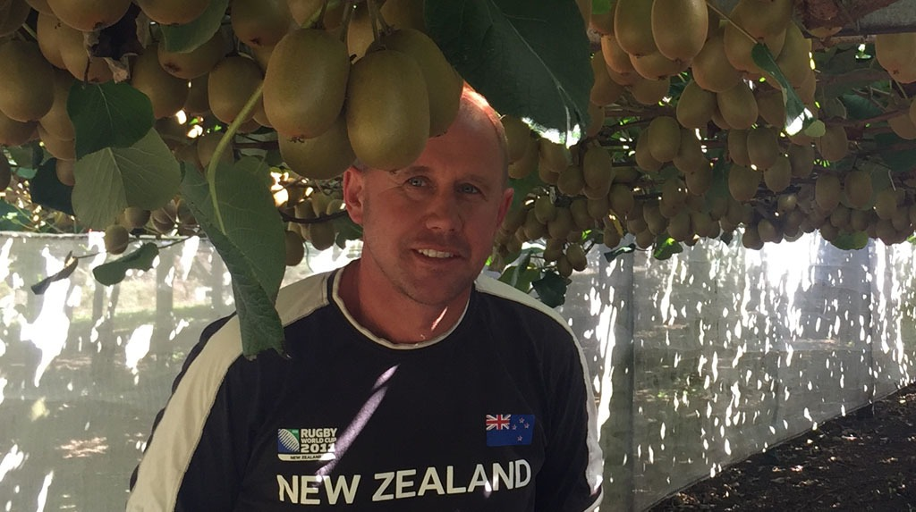 Using Actigard post-harvest for Psa control in Kiwifruit